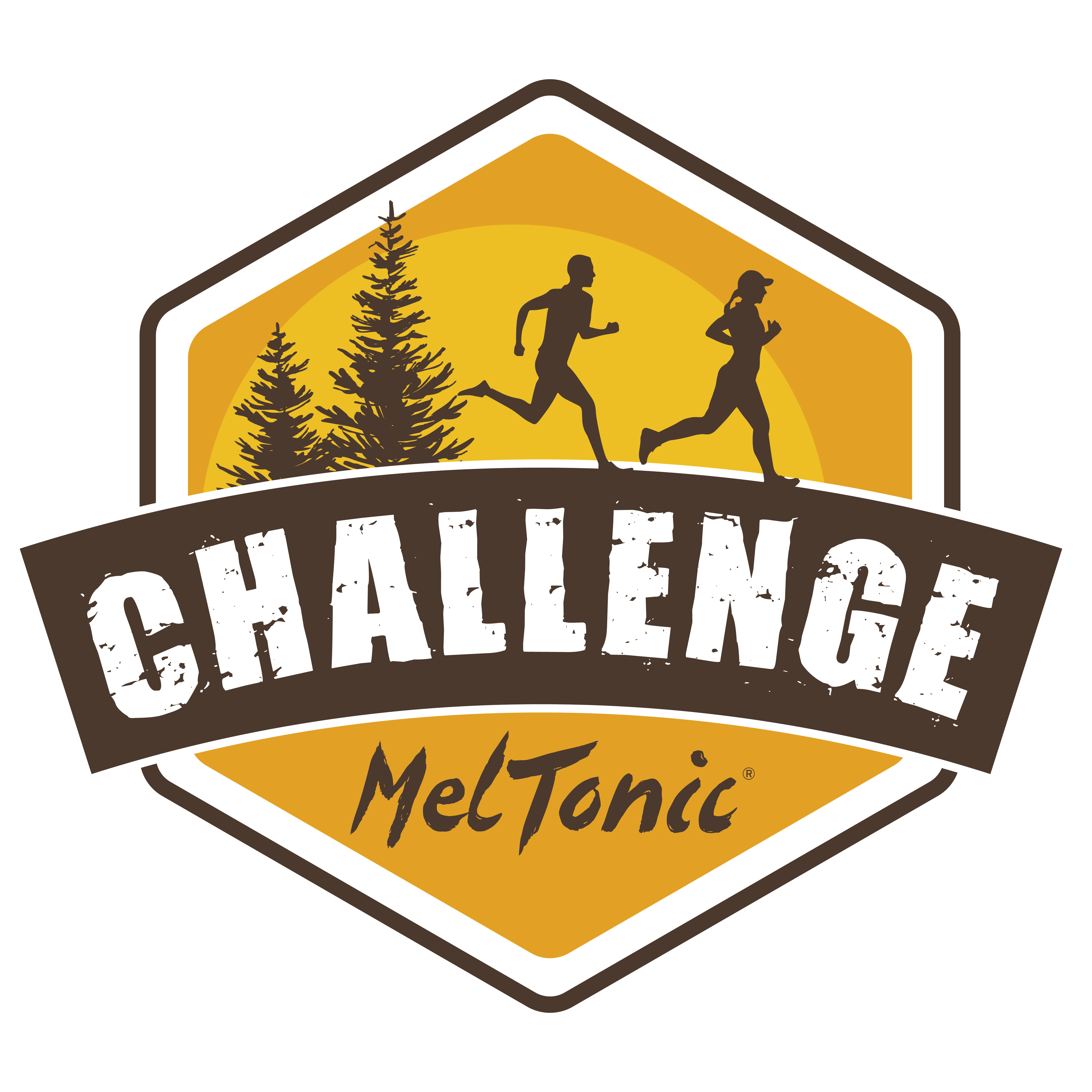 logo du challenge meltonic 2021